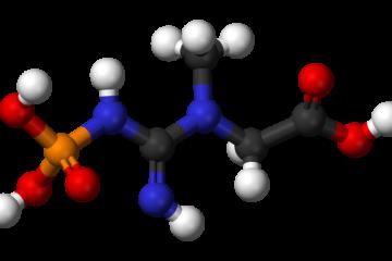 מולקולות קריאטין